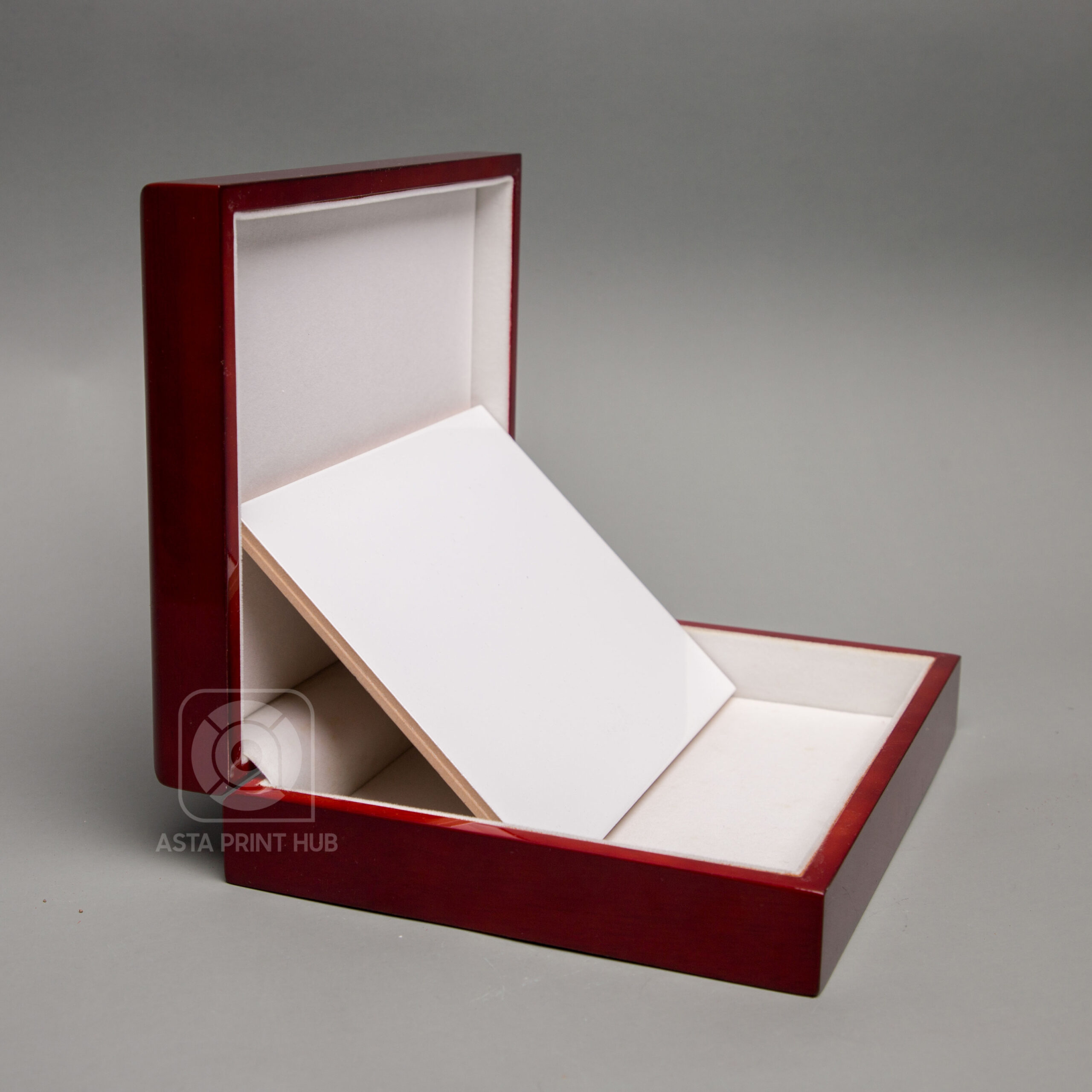 astaprinthub-items-9786756 (27)